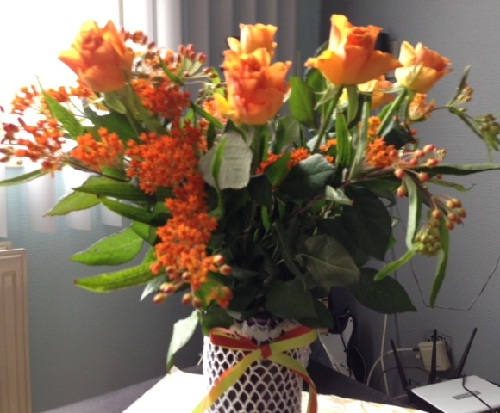 orange roses and flowers for Dutch Queen's Day