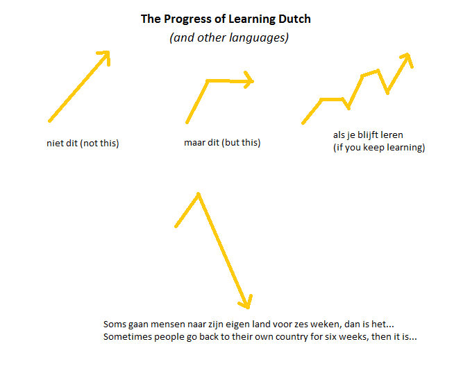 The Progress of Learning Dutch