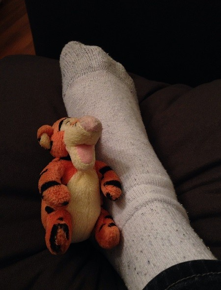 little stuffed Tigger