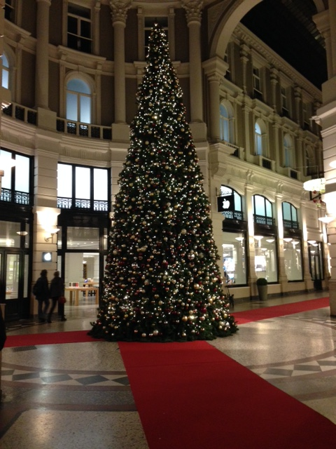 Christmas tree by the Apple store, The Hague