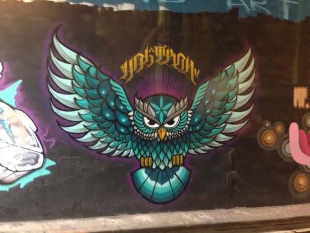 Owl graffiti in The Hague