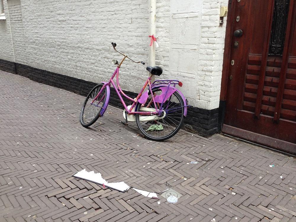 Dutch bike - in purple