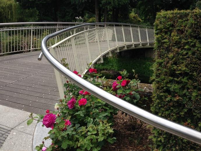 Bridge near rose garden at National Botanic Gardens in Dublin