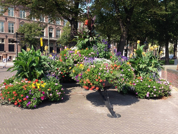 Flowers by the Buitenhof in The Hague
