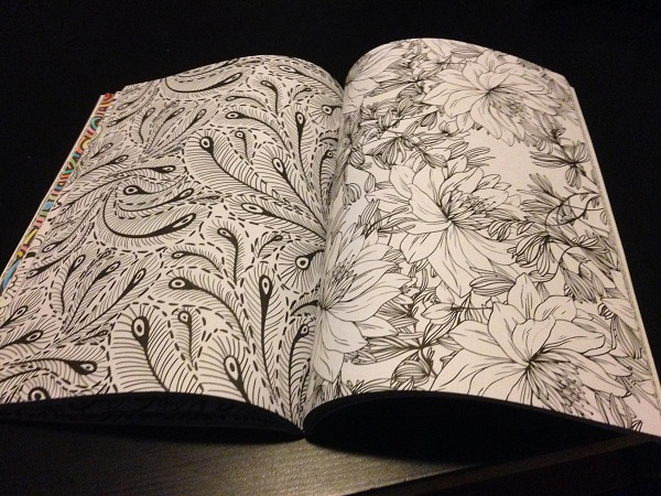 Adult coloring book (blank pages)