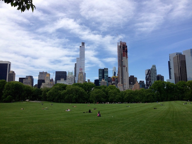 View from Central Park - skyline construction