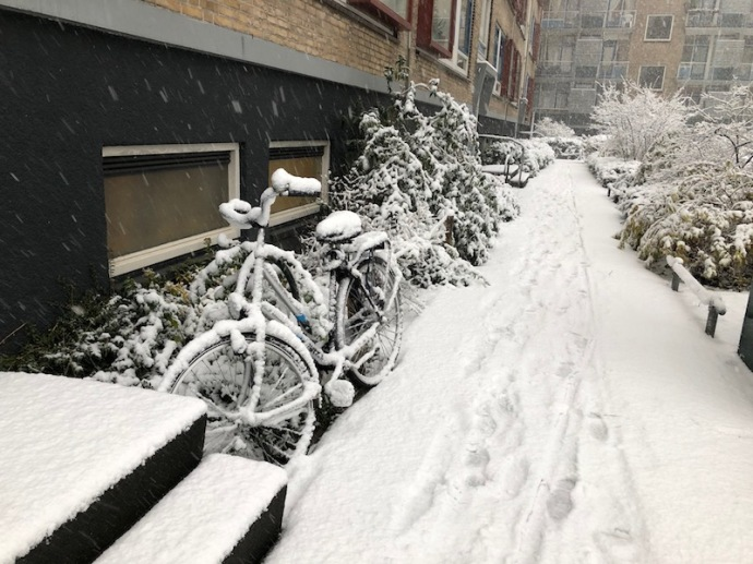 Snowfall in The Hague, Dec 2017