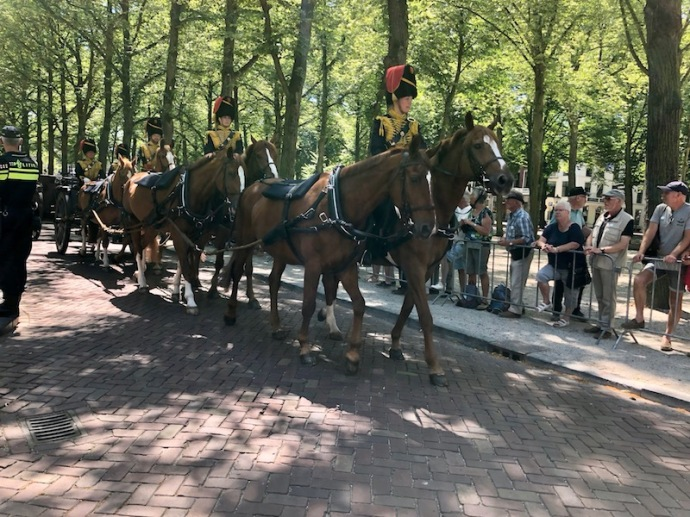 Veterans Day 2018 in The Hague - horses